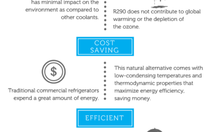 INFOGRAPHIC: Benefits of the Natural Alternative – R290